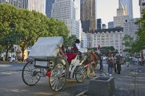 central_park_horse_drawn_carriage