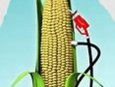 biodiesel_03