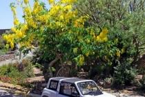 citroen_e-mehari_pantelleria_12