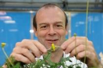 Institut für Biochemie und Biotechnologie der Pflanzen Frauenhofer IME Prof. Dr. Dirk Pruefer am 17.05.2011