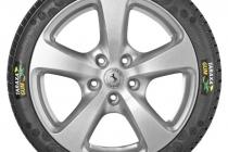 taraxagum-tire-small