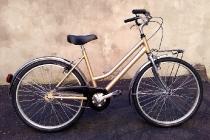 ies_bike_muscolare_26_pollici_01