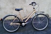 ies_bike_muscolare_26_pollici_03