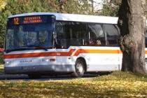 transportastion_bus