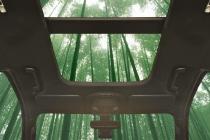 Potentially Bamboo Vehicle Interiors
