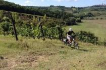 ies_bike_via_francigena_15