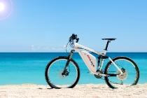 eh_line_f-250_bike_04