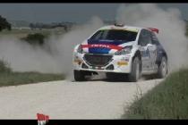 peugeot_rally_adriatico