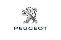 logo_peugeot_electric_motor_news