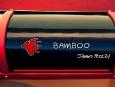 rinspeed_bamboo_elettrica18
