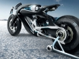 saline_bird_motorcycle_09_0