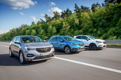 Opel-X-Family-503468