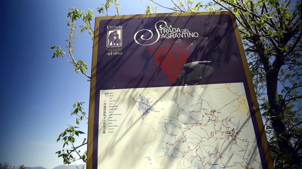 PEUGEOT-508-SW-GT-Line-ALLA-SCOPERTA-DEL-SAGRANTINO-2
