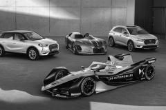 DS-Automobiles-partner-della-quinta-edizione-di-Chantilly-Arts-2