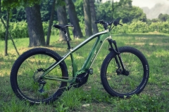 e-bike_ds_original_indianapolis_electric_motor_news_02