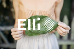 elli_volkswagen_naturstrom_electric_motor_news_02