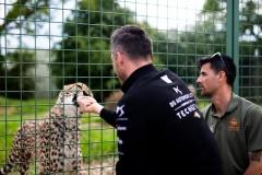 ds_techeetah_cheetahs_electric_motor_news_06