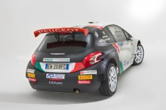 pollara_de-tommasopeugeot_rally_electric_motor_news_12