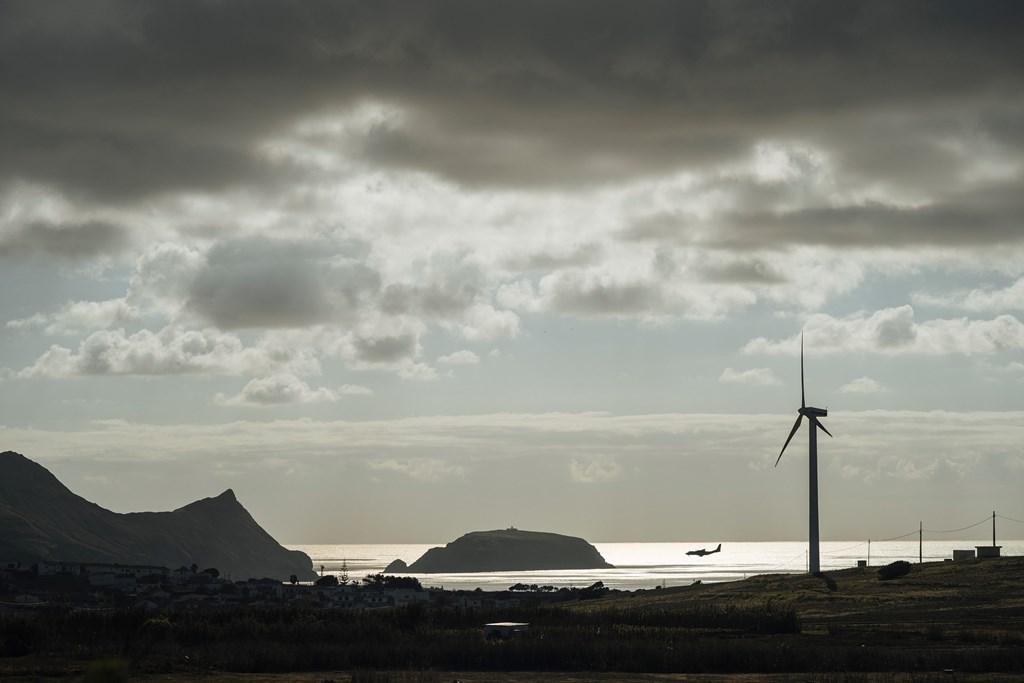 2019 - Ecosystème Porto Santo