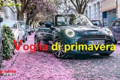 5_mini_cabrio_sidewalk-Copia