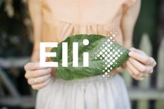 volkswagen_elli_electric_motor_news_02