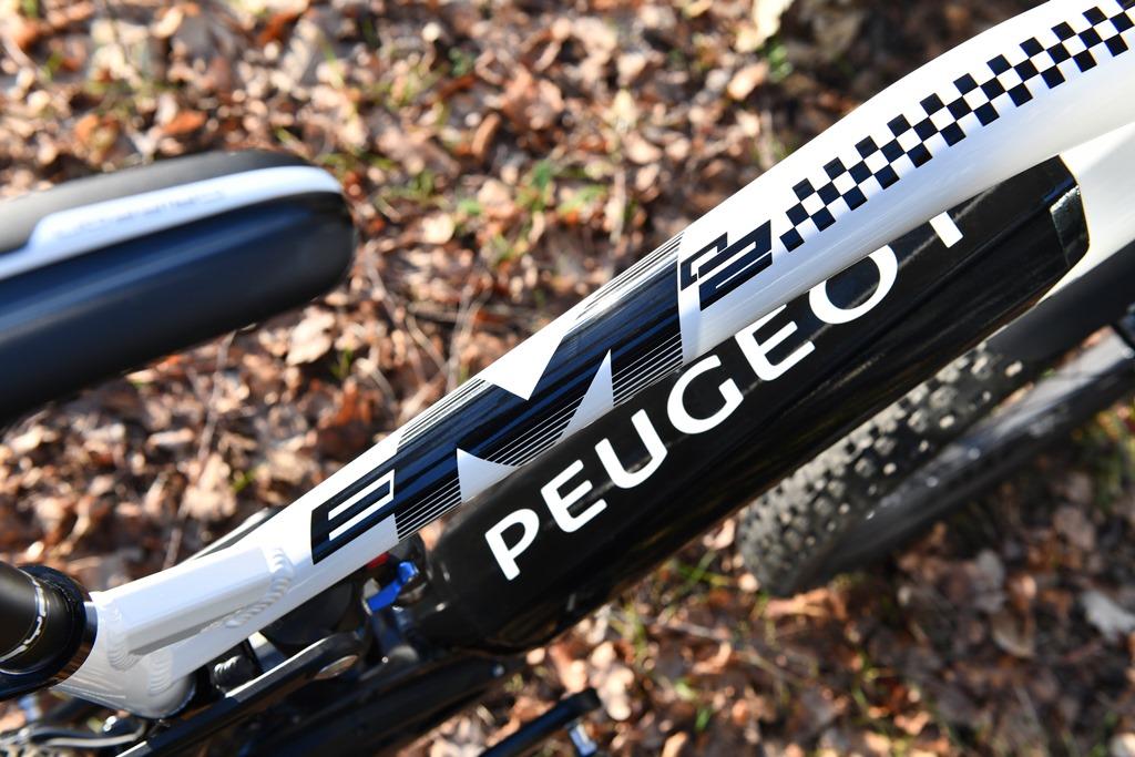 Peugeot_Cycles_Team_eM02_FS_008