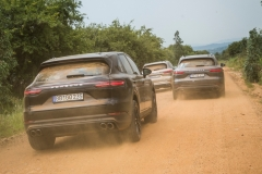 porsche_cayenne_e_hybrid_south_africa_2018_electric_motor_news_06