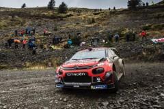 Bronzo-per-Citroën-al-Rally-di-Gran-Bretagna-con-Ogier-4