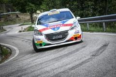 Rally-Friuli-ENNESIMA-VITTORIA-DI-TOMMASO-CIUFFI-E-LA-PEUGEOT-208-1