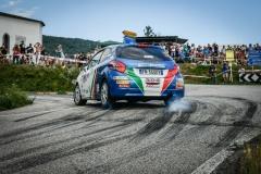 Rally-Friuli-ENNESIMA-VITTORIA-DI-TOMMASO-CIUFFI-E-LA-PEUGEOT-208-3