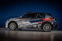 Peugeot-208-Rally-4-03