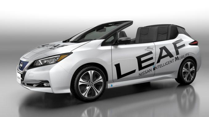 Nissan Leaf Open Air