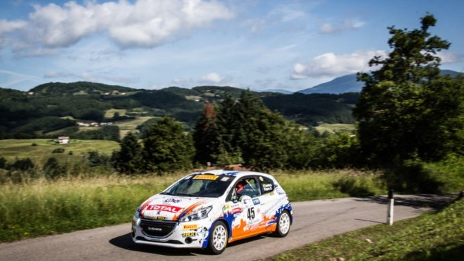 Peugeot Competition Rally 208