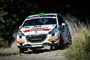 Peugeot Competition Cup 208