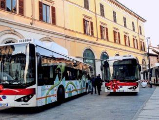 BYD ebus Padova
