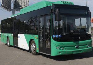 Bus Yutong La Reina