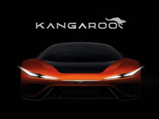 Kangaroo by GFG Style