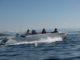 Frauscher Shipyard 740 Mirage Air