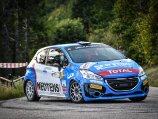 Peugeot Competition 208 Rally Cup Top