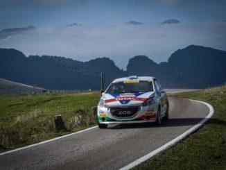 Ciuffi Peugeot Rally 2 Valli