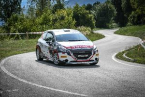 Peugeot Competition 208 Rally Cup TOP 2019.