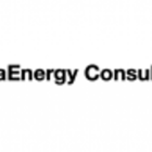 extraenergy_consulting_services_electric_motor_news_02