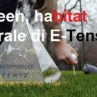 5_ds_golf – Copia