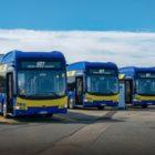 gtt_byd_e_bus_electric_motor_news_3