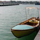 e-regatta_venezia_electric_motor_news_02_torqeedo